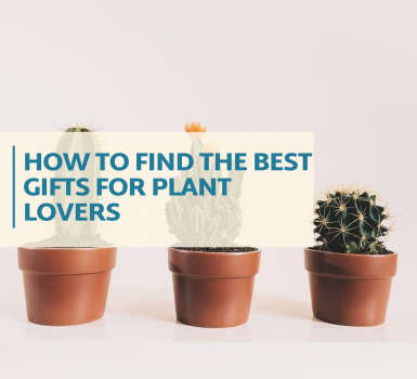 How To Find The Best Gifts for Plant Lovers