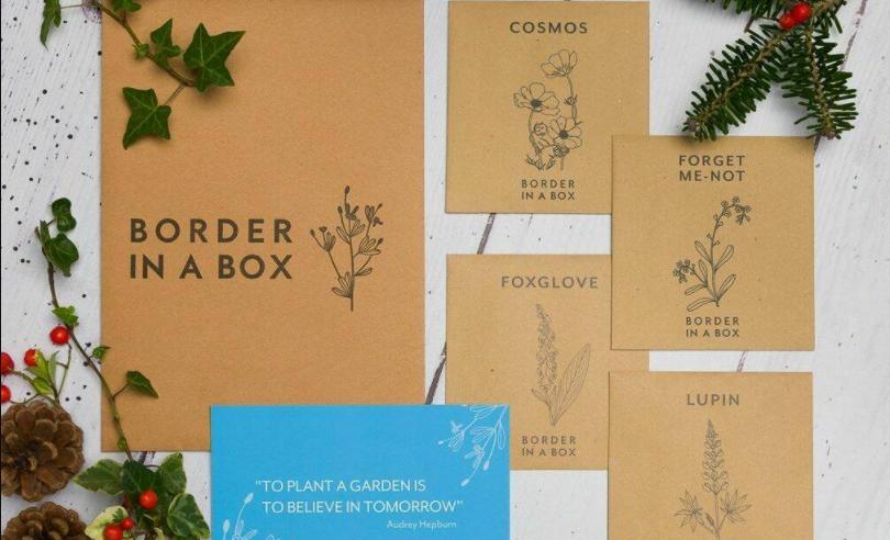 border in a box