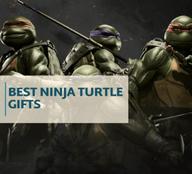best ninja turtle gifts