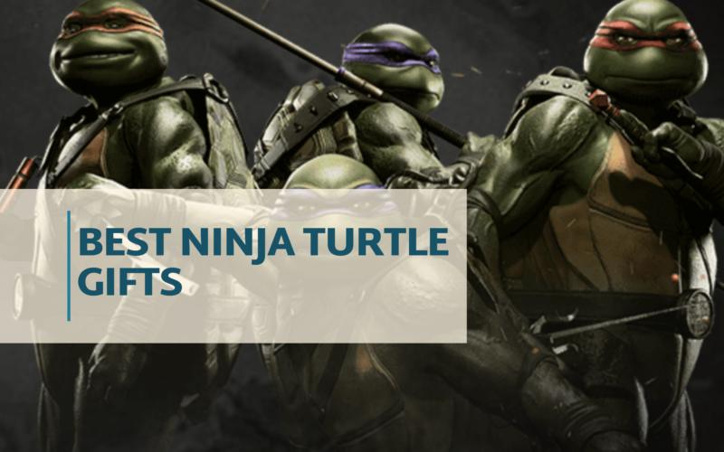 best ninja turtle gifts