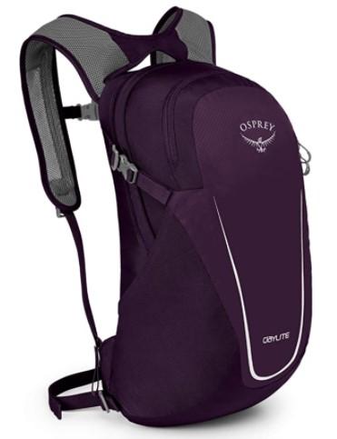 Best 59th Birthday Gift Ideas osprey daylite